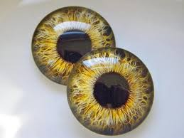 Glass Eyes Gold Eyes Doll Eyes Taxidermy Eyes Realistic
