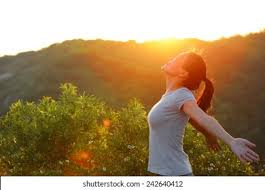 Lifestyle HD Stock Images   Shutterstock