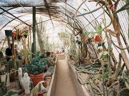 moorten botanical garden engagement palm springs southern california lifestyle photographer gaby j photography