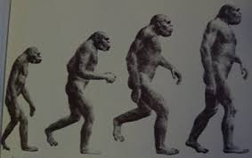 homo sapiens the evolution of what we think about who we are the second part of the original ldquo of progressrdquo from f clark howell s early man