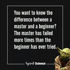 Master Has Failed More Times Than The Beginner Has Ever Tried So