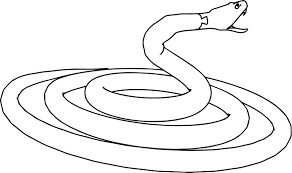 Small Picture Angry Snake Coloring Page Wecoloringpage