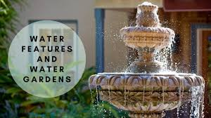better your backyard design with water