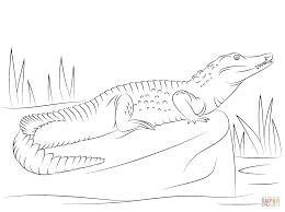 Small Picture Nile Crocodile Side View coloring page Free Printable Coloring Pages