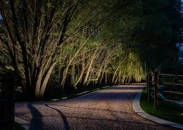 tree lighting ideas. Tree Lighting Ideas O