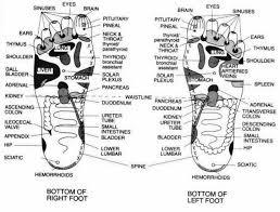 Hand And Foot Pressure Points Chart Www Bedowntowndaytona Com