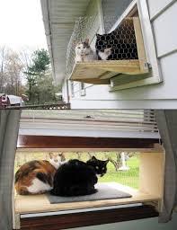 Diy Window Boxes Cat Window Box 001 Simple Diy Cat Window And Indoor