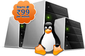 Image result for linux hosting
