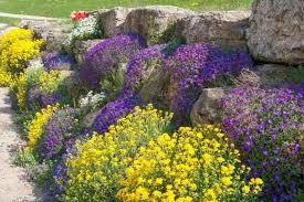 full size of home ideas rock garden without plants corner rock garden ideas simple rock