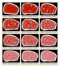 Usda Beef Quality Grade Chart