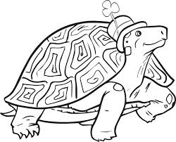 Small Picture Free Printable St Patricks Day Turtle Coloring Page for Kids