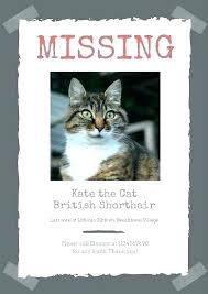 Lost Cat Flyer Lost Cat Poster Template Lost Cat Template Lost Cat Flyer