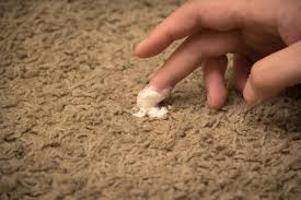 up from carpets citrus carpet cleaning source how to remove iodine sns michael gann demand a remove makeup sns carpets fast
