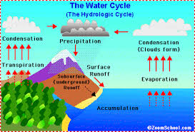 the water cycle   zoomschool comthe water cycle  also known as the hydrologic cycle  is the journey water takes as it circulates from the land to the sky and back again