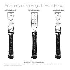 Oboe Shaper Tip Chart The Ultimate Guide To English Horn Reeds Khara Wolf