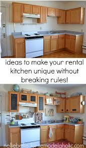 Kitchen Decorating Ideas For Renters