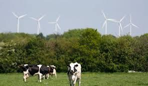 """Loire-Atlantique: des troubles mystérieux sans """"lien direct"""" avec les éoliennes"""