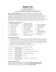 Construction Project Manager Resume Construction Executive Resume