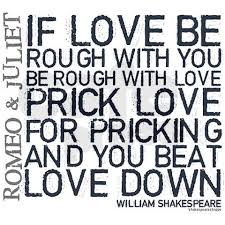 Romeo And Juliet Love Quotes 47 Wonderful Mercutio Delivers My Favorite Line In Romeo Juliet Quotes