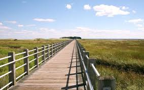Boardwalk And Beach Review Of Silver Sands State Park
