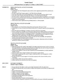 Account Manager Resume Examples Travel Account Manager Resume Samples Velvet Jobs Account 11