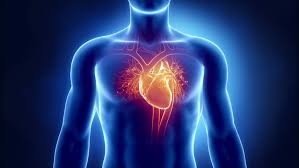 Human Heart Problem Stock Footage Video 100 Royalty Free 2757698 Shutterstock