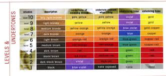 Hair Color Wheel Chart The Level System Hair Levels And Undertones In 2019 Hair