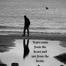 Sad Quotes Quotes About