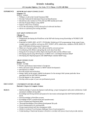 Skills To Add To Resume Abap Consultant Resume Samples Velvet Jobs 84