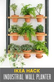 Small Picture Make An Indoor Herb Planter In 10 Minutes Grillo Designs