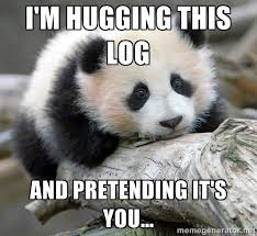I'm hugging this log And pretending it's you... - sad panda | Meme ... via Relatably.com