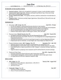 Budget Accountant Sample Resume Adorable Risk Analyst Resume Example Financial Marketing Analysis