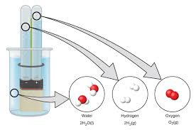 a diagram shows a beaker that contains a liquid a battery submerged in the liquid the electrolysis of water