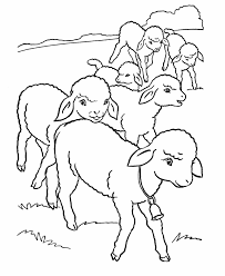 Small Picture animals lambs lamb coloring page cartoon stationary sheep