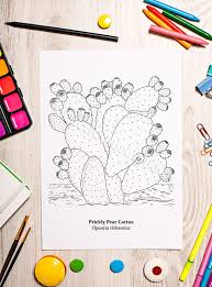 Small Picture Prickly Pear Cactus Coloring Page Digital Download PDF