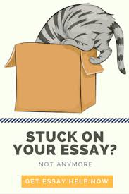 the stress guide to apa essay format essay writing