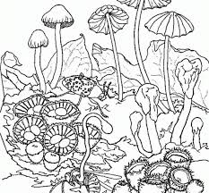 Small Picture Free Coloring Pages Trippy Coloring Book Fresh In Painting Picture