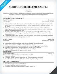 How To Compose A Resume Beautiful Resume Writing Help New Free ...