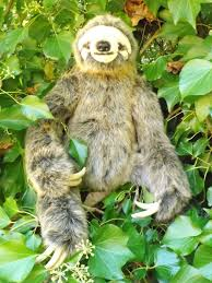 large stuffed sloth 24 realistic looking sloth plush toy