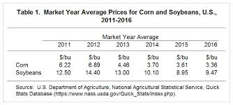 5 Year Corn Price Chart Expectations For Corn And Soybean Prices Over The Next Five