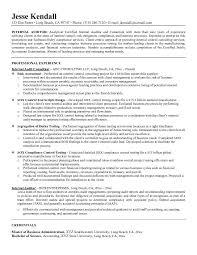 Internal Audit Resume Cover Letter Samples Cover Letter Samples