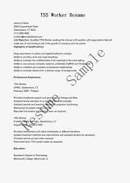 use this sample tss worker resume objective skills use this sample tss worker resume objective skills responsibilit