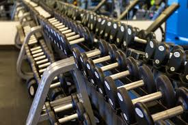 Weights Measures Chart Free Weights Vs Weight Machines Forest City Fitness