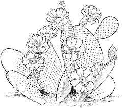 Small Picture Free Printable Cactus Coloring Pages For Kids