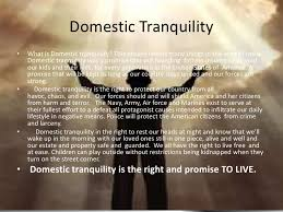 Ensure Domestic Tranquility Insuring Domestic Tranquility