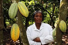 Resultado de imagen de fotos cacao de oxfam