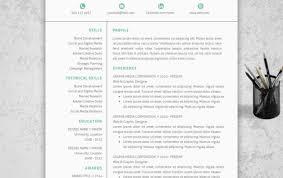 Pretty Resume Templates Classy Pretty Resume Templates Endearing Pretty Resume Templates Word