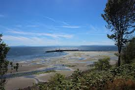 White Rock Beach Tide Chart Low Tide What Youll Find Explore White Rock