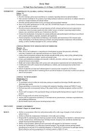 Sample Zoning Enforcement Inspector Resume Animal Resume Samples Velvet Jobs 19