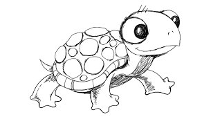 Small Picture Cartoon Turtle Drawing How To Draw A Step 6 1 000000011702 5jpg